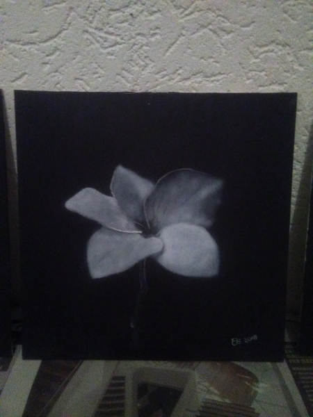 Drybrush-zwartwit-bloem-II